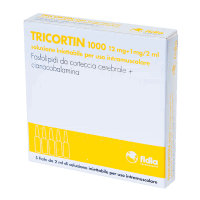 Купить Трикортин 1000 ампулы 2мл 5шт, Fidia Farmaceutici SpA